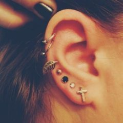 Piercebody.com Offers Great Deals on Auricle Piercings