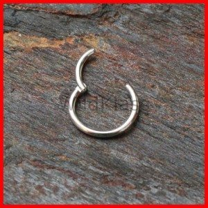 Hinged-Septum-Ring