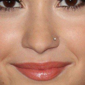 demi-lovato-nose-piercing-500x500