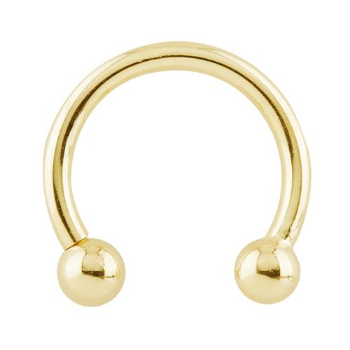 Gold Circular Barbell