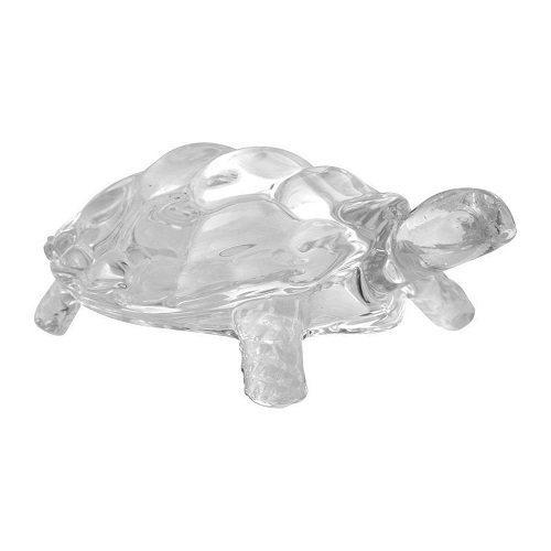 White Crystal Tortoise