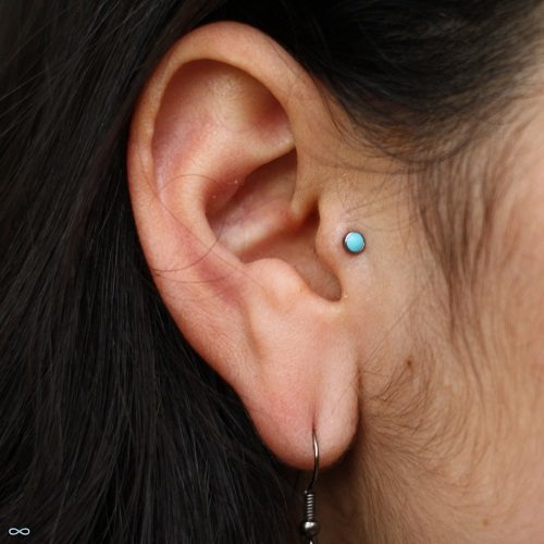 Tragus Piercing Jewelry Tragus Earrings And Studs Piercebodycom